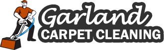 Professional Carpet Cleaning Company Logo
